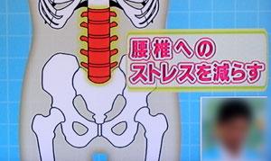 腰痛予防の2つのピラティスエクササイズ