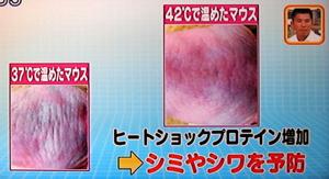 ヒートショックプロテインで細胞から若返る!42度入浴法